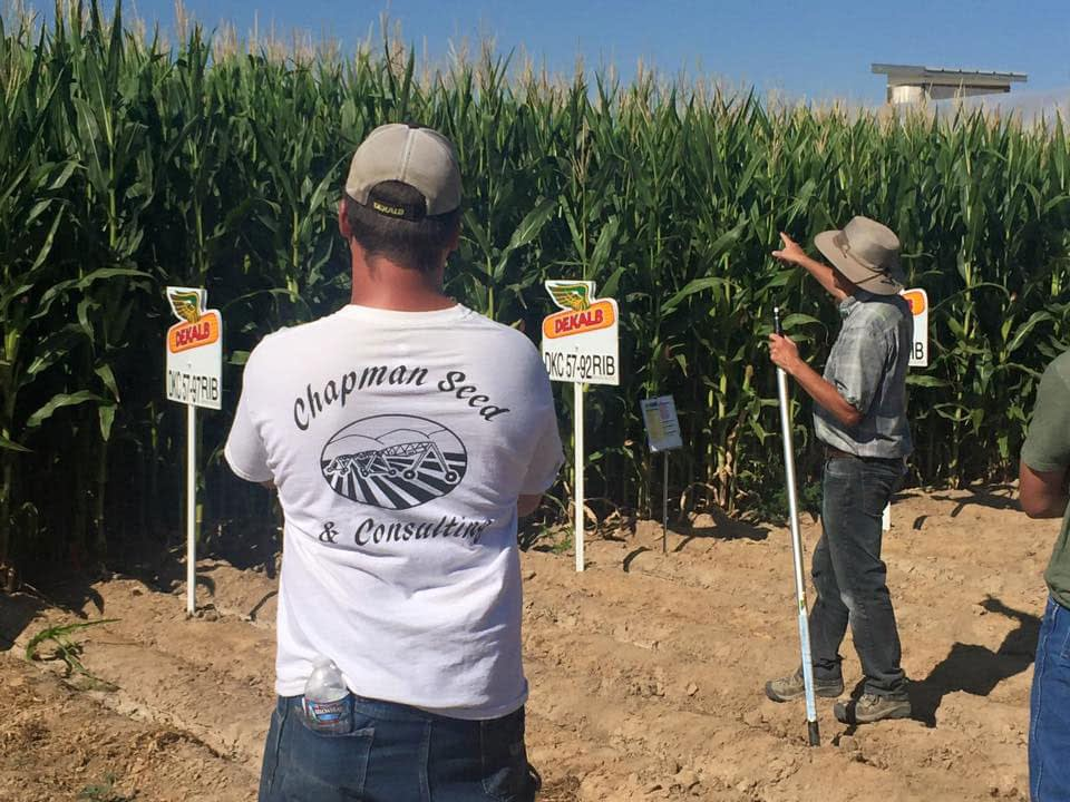 Regional Agronomist, Dave Heinkes, demonstrates his expertise at the annual Dekalb Field Day